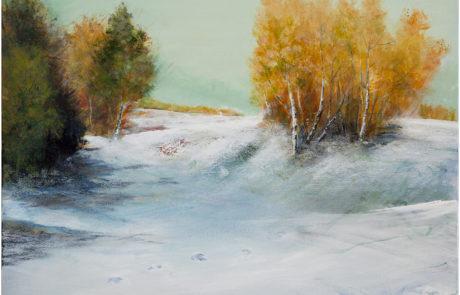 Prima neve in Autunno di Daniela Borsoi