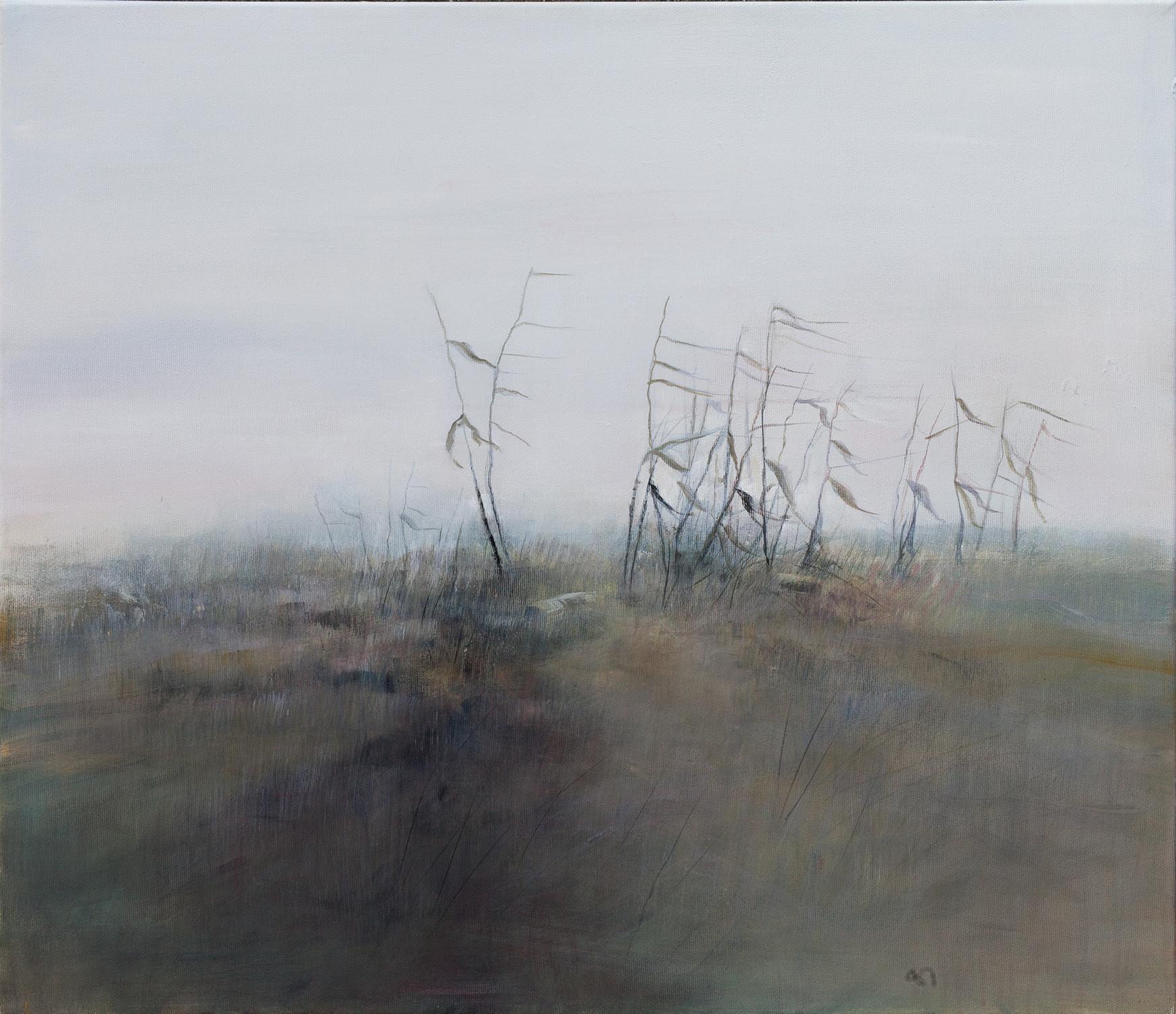 Brezza in pianura di Daniela Borsoi