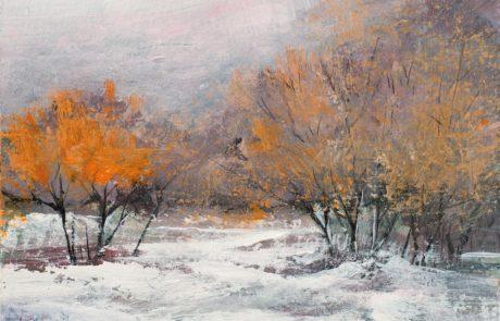 Daniela Borsoi - Atmosfera invernale